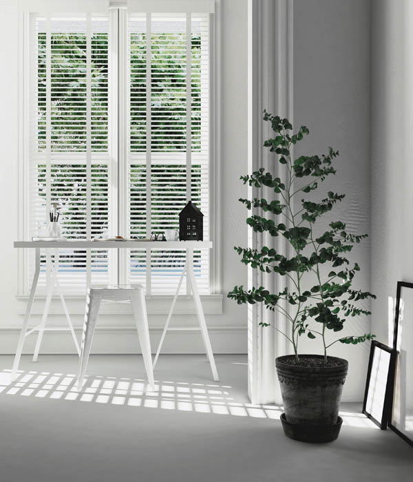 Photo of Black Roller Blinds